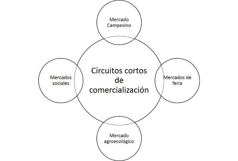 Relación semántica entre los términos guía de la revisión sistemática a partir del concepto de circuitos cortos de comercialización.